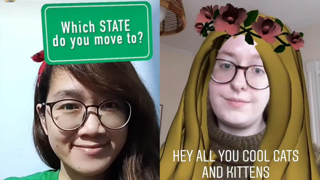 carole baskin snapchat filter move to which state instagram filter