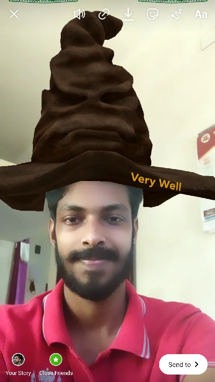 sorting hat filter tiktok instagram