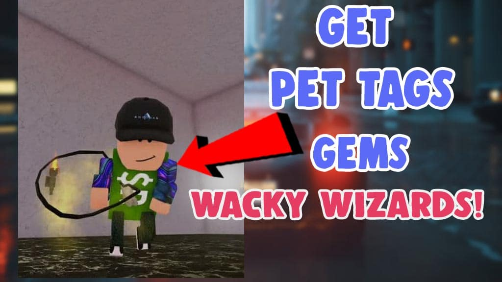 get new item pet tags and gems wacky wizards