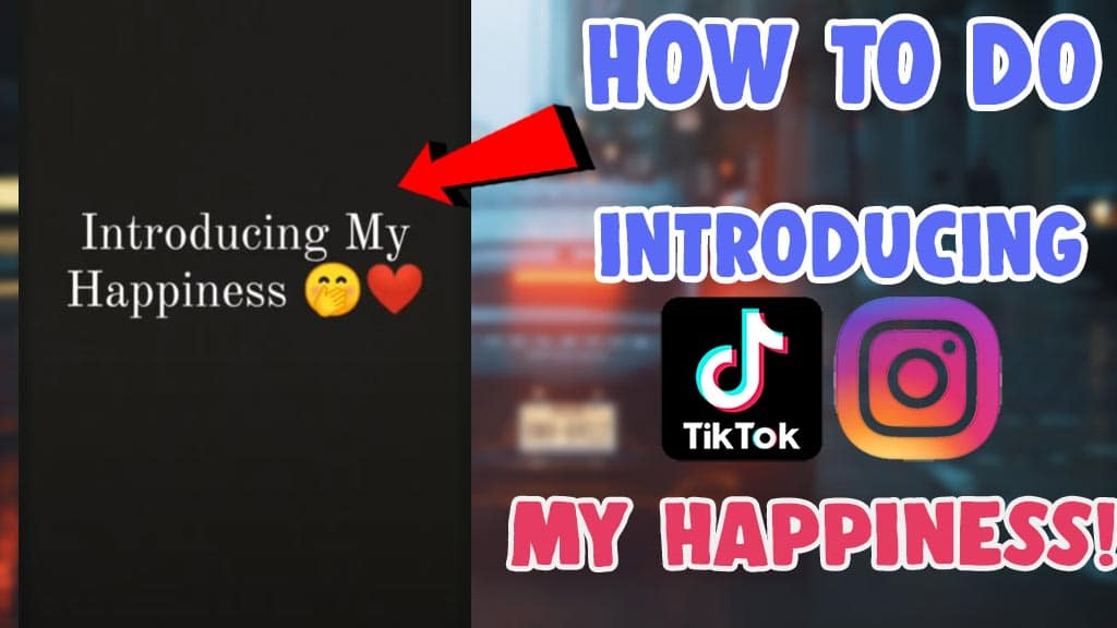 how to make introducing my happiness